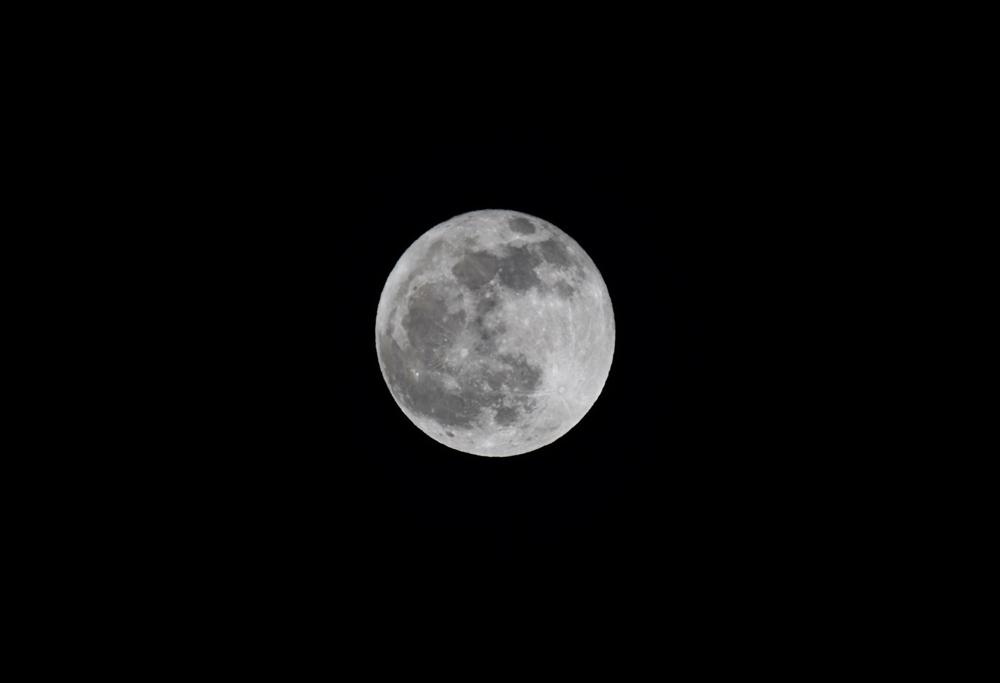 今日は2019年最後の満月、2019年の満月を振り返る