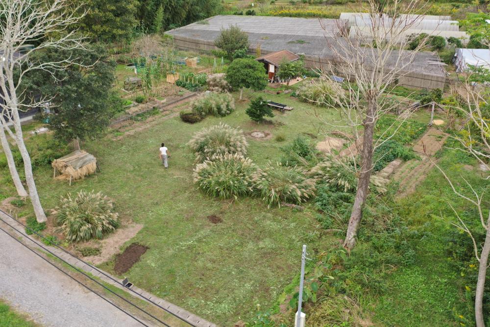 房総フィールドガーデニング 2021年草刈り納め 来年の仕込み〜食べれるルヌガンガ目指して!