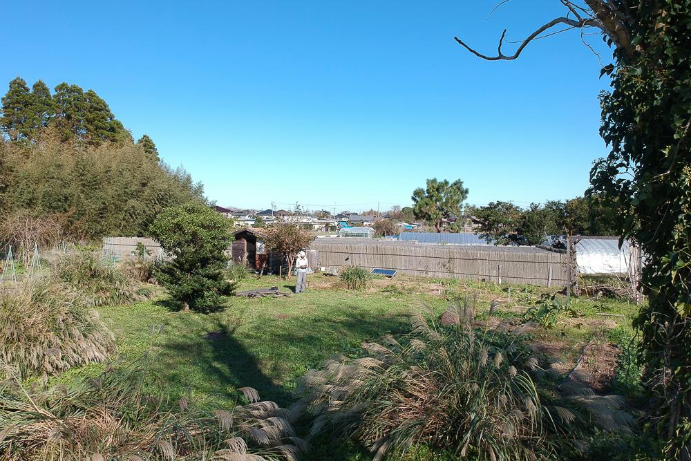 房総フィールド 秋の畑 DJI Sparkで空撮