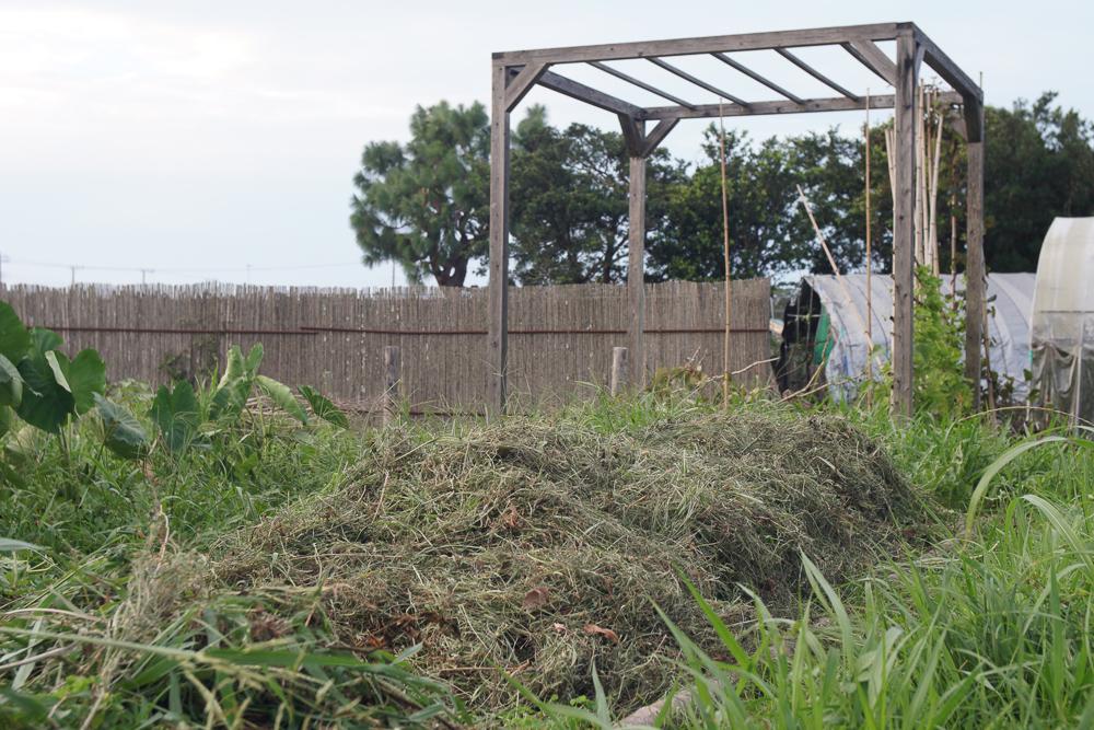 房総オルタナティブガーデン 初秋の気配 野良仕事 雑草堆肥