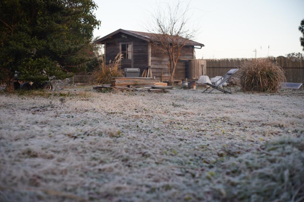 房総フィールド冬の朝