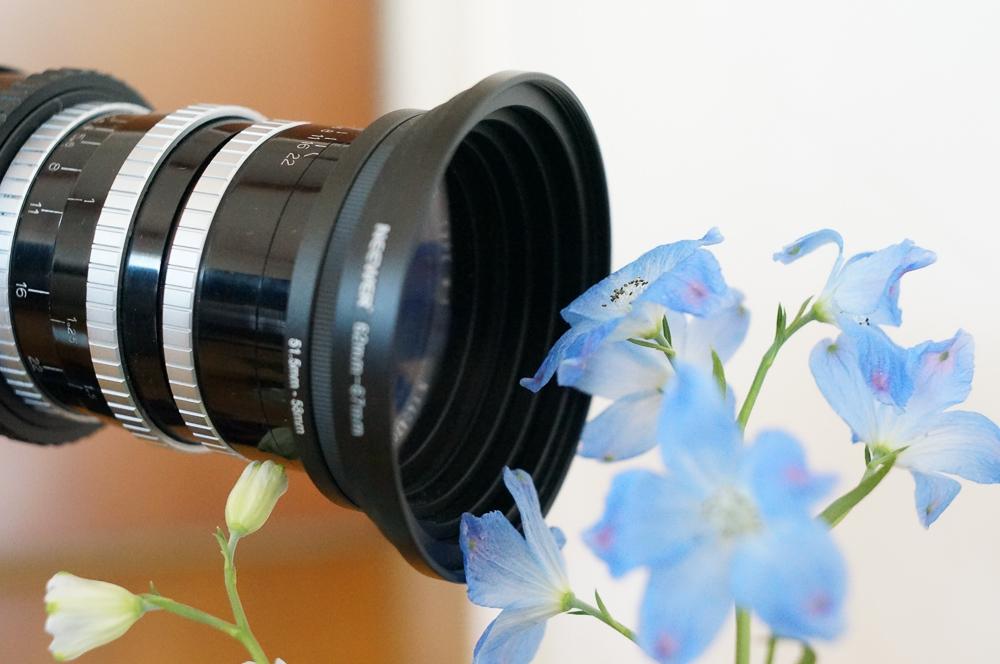 オールドレンズAngenieux35mm+Pixcoマクロヘリコイドアダプターでお花を接写