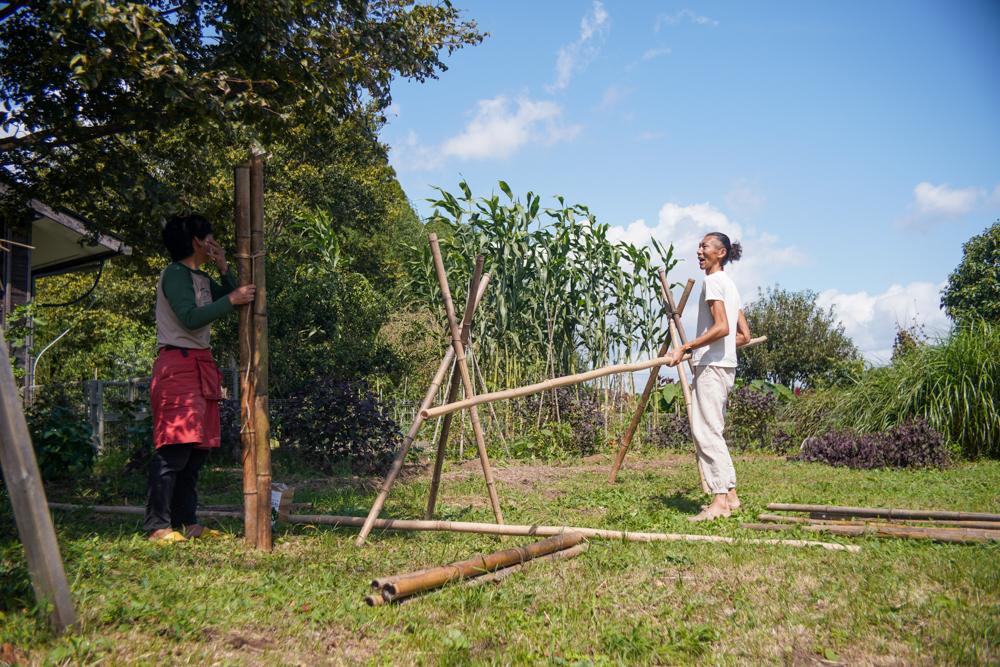 房総オルタナティブライスフィールド 2021年稲刈りDAY5 竹で稲架(はさ)を作る+大根種下ろしとちょこっと稲刈り