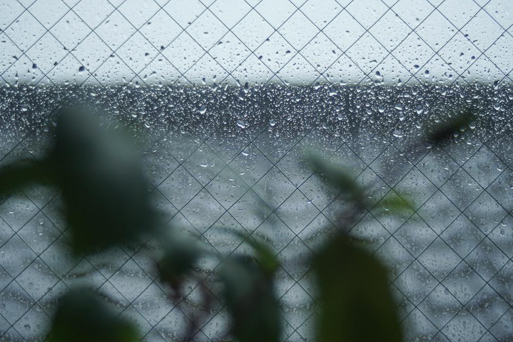 台風19号雨