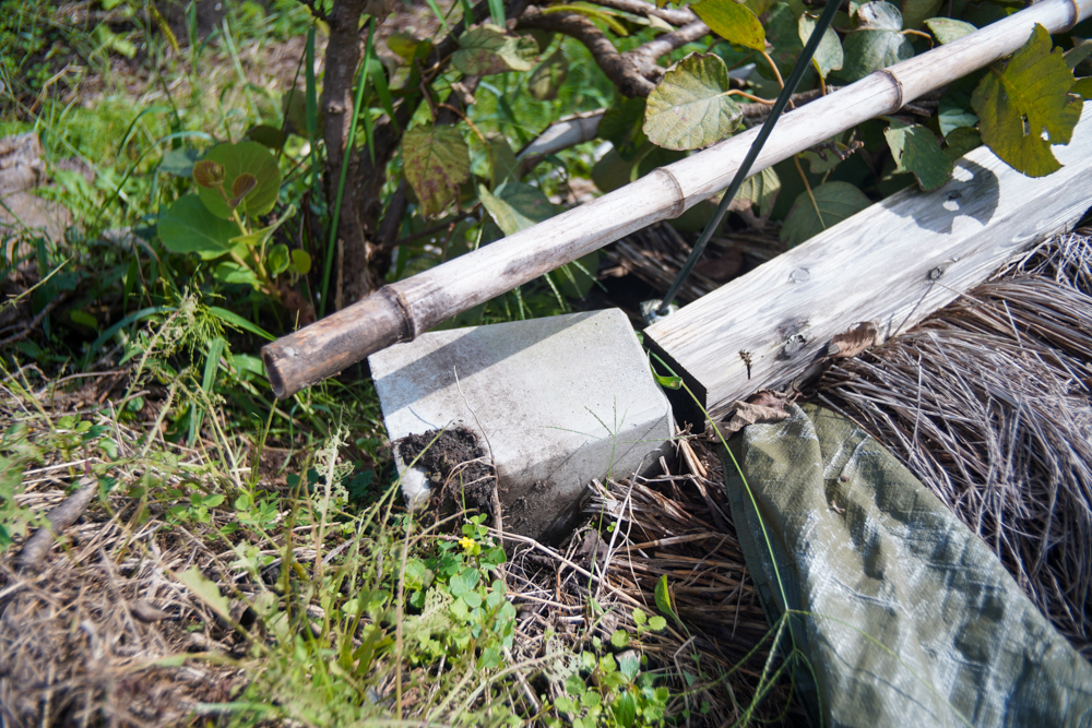 台風16号でパーゴラが倒壊する+房総オルタナティブ米脱穀完了 2021年脱穀DAY3