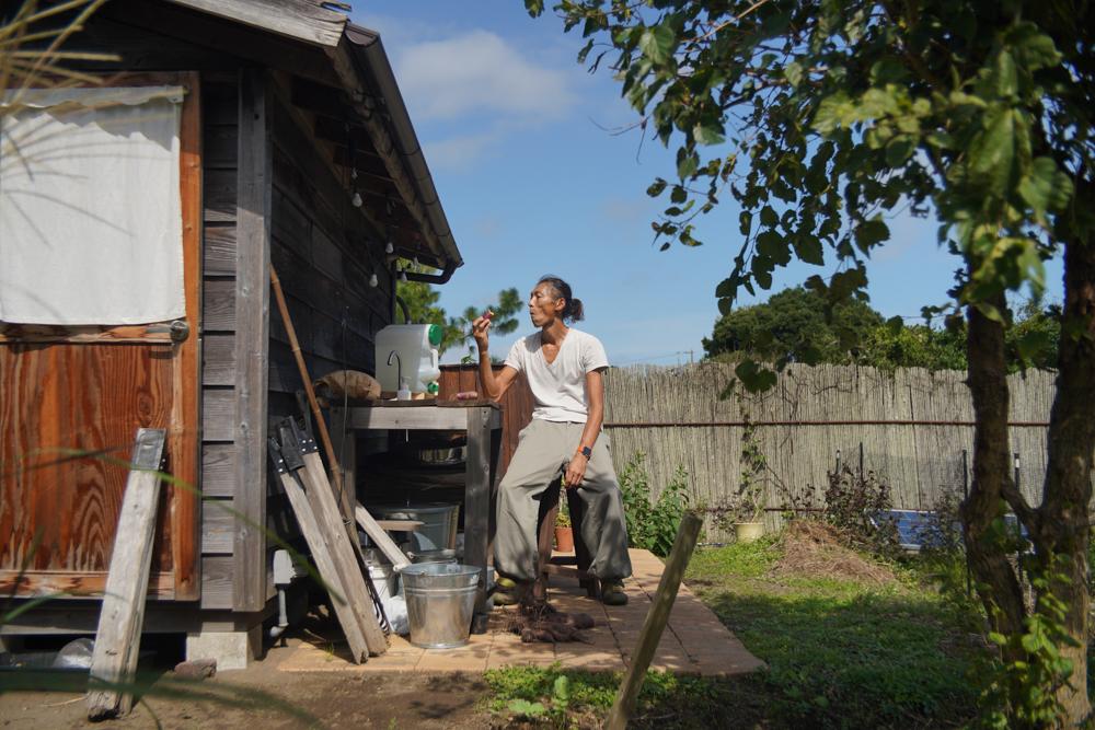 パーゴラの暫定復旧と房総バーター貿易