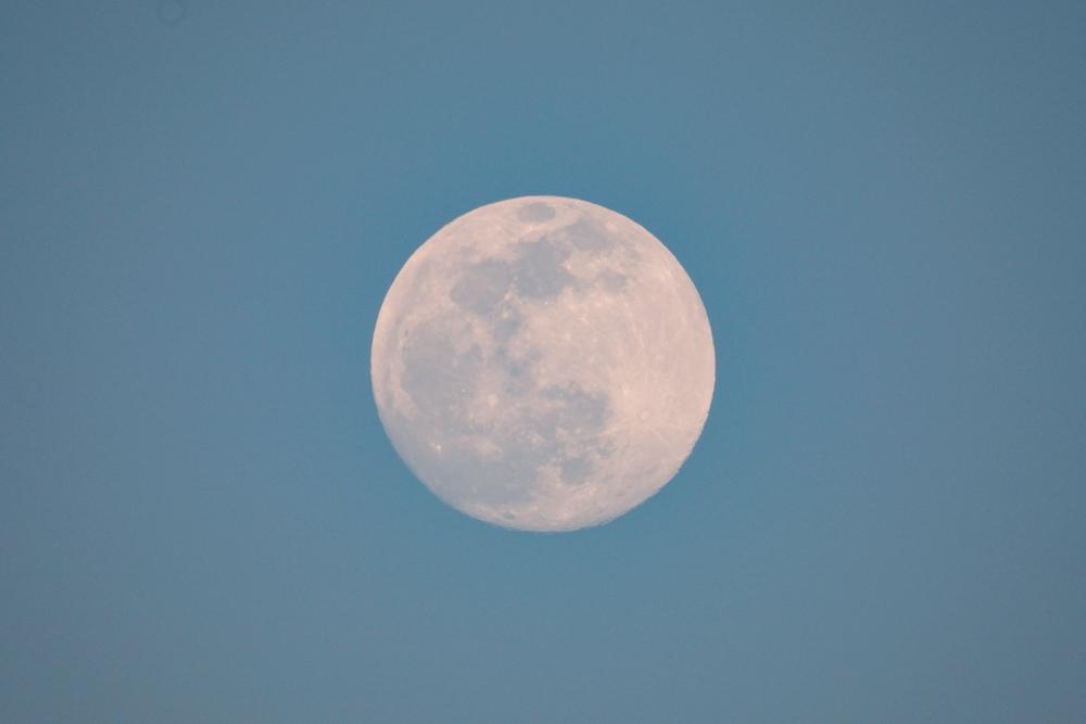 almost full moon 2020 Feb
