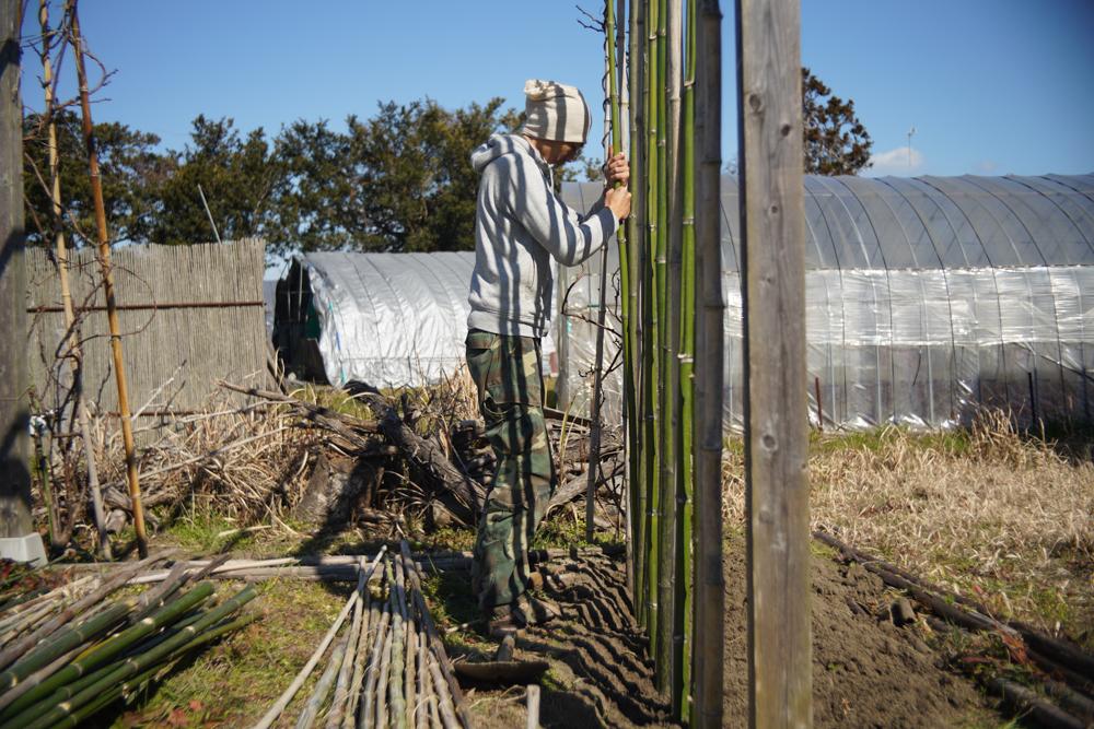 竹垣の修復 支柱を立てる