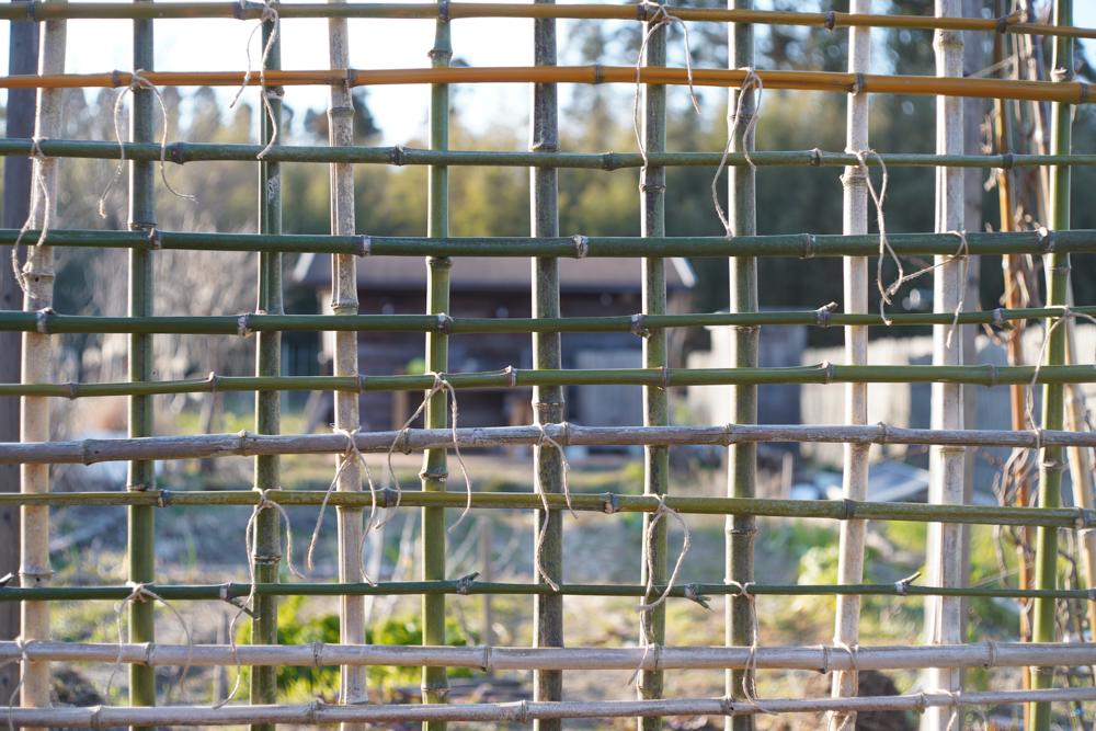 竹垣の修復
