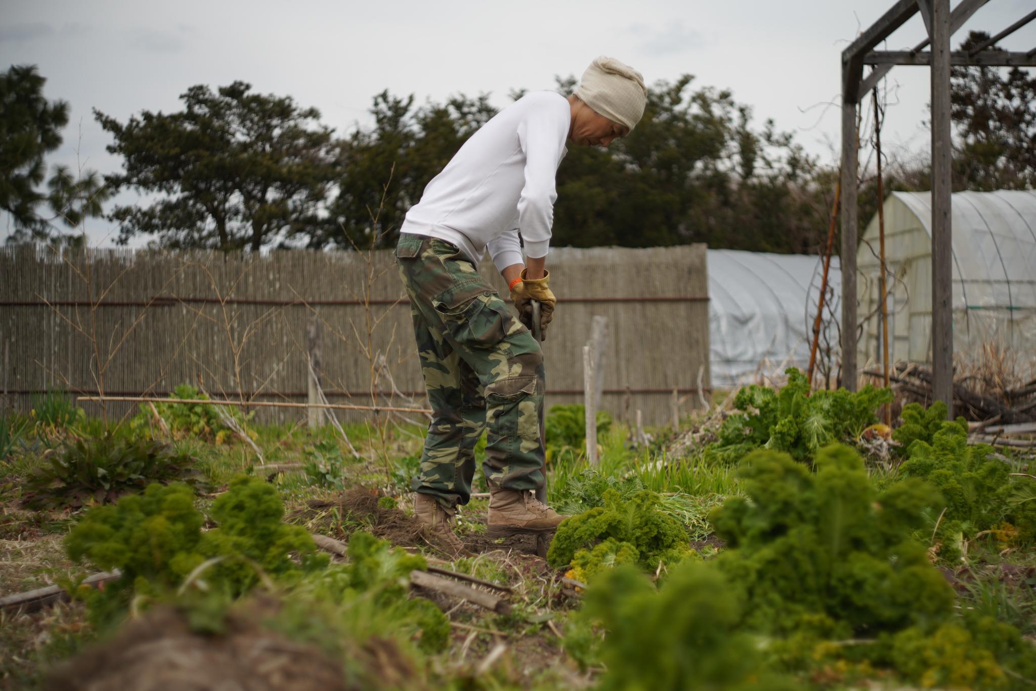 2020年 ジャガイモ畑開墾