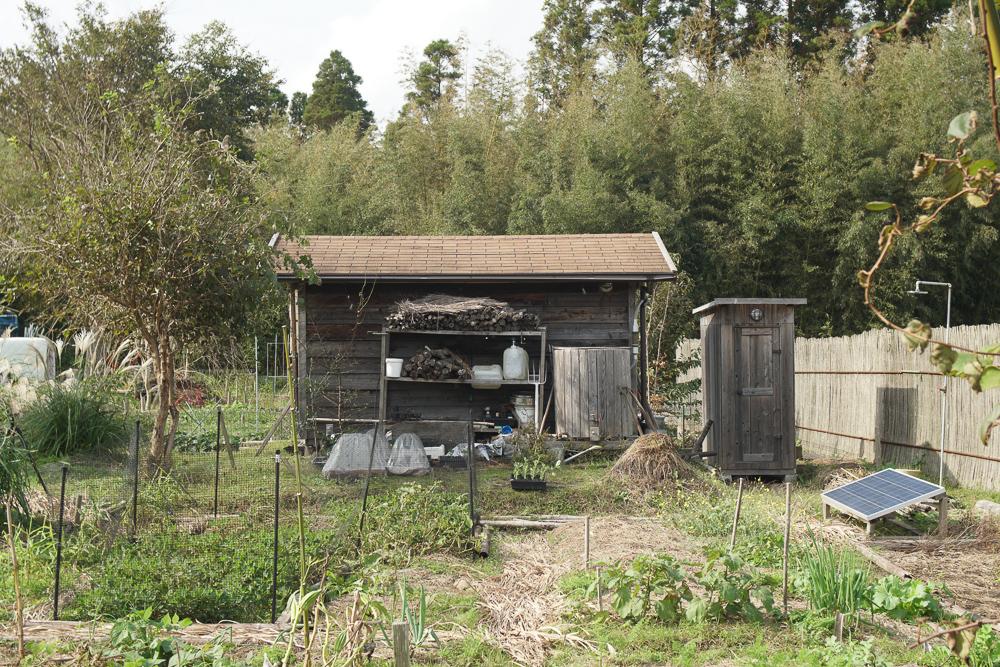 台風21号通過後初めての房総フィールド 小屋無事でした