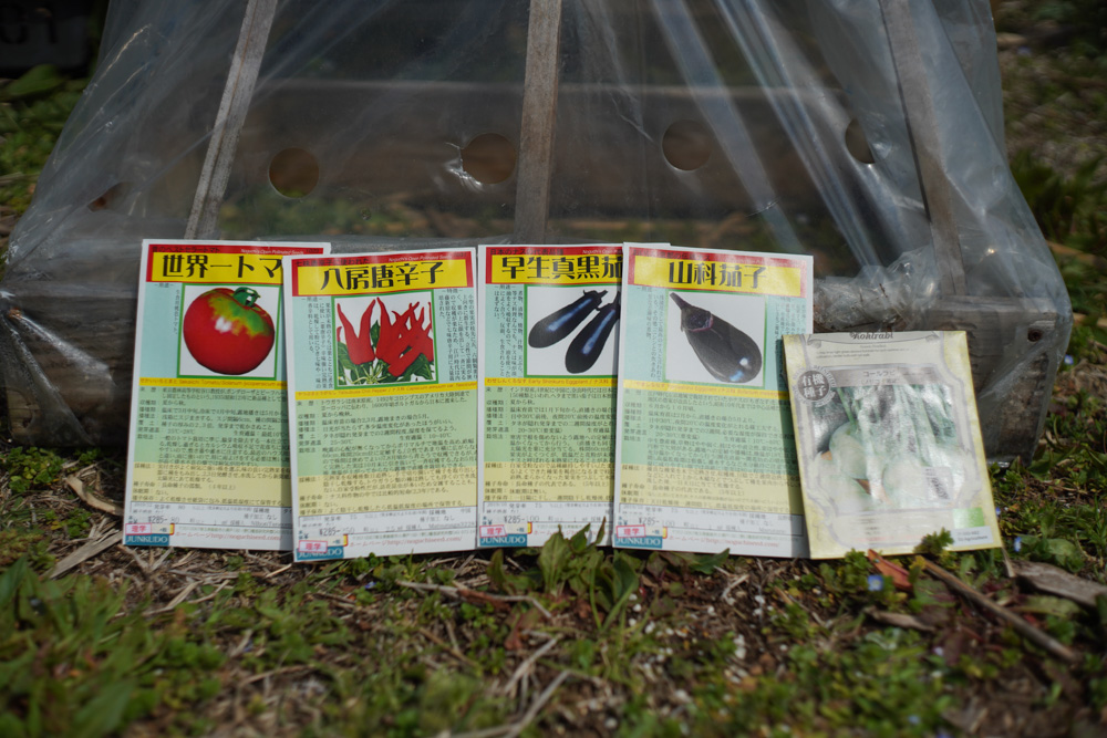 和ナス(山科茄子・早生真黒茄子)・世界一トマト・八房唐辛子の種下ろし