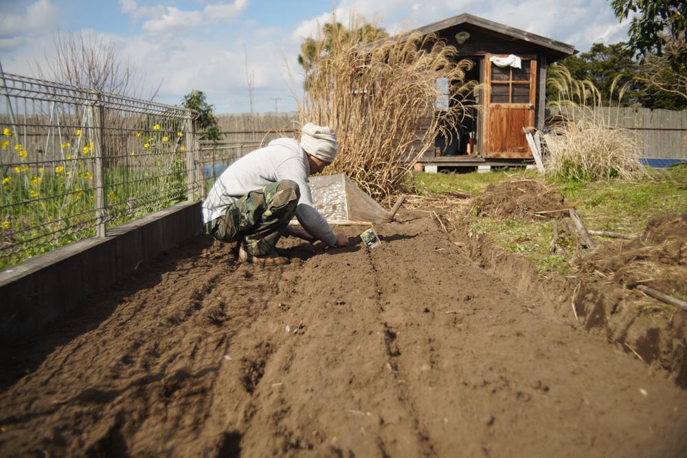 3月・新月・新たな区画の開墾が終わり種下ろし