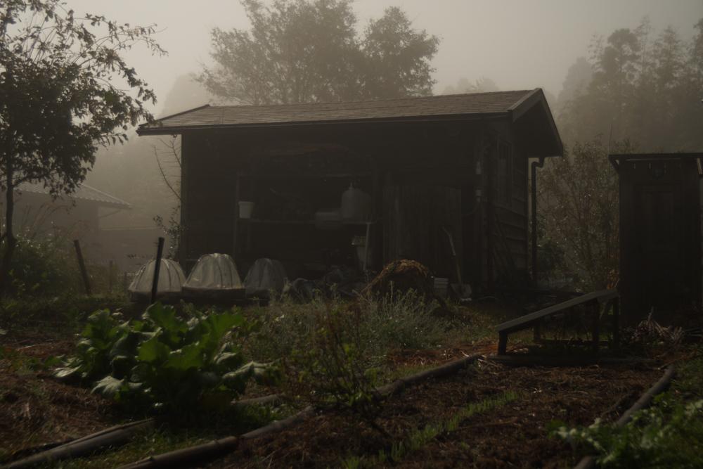 深夜 濃霧の房総フィールド