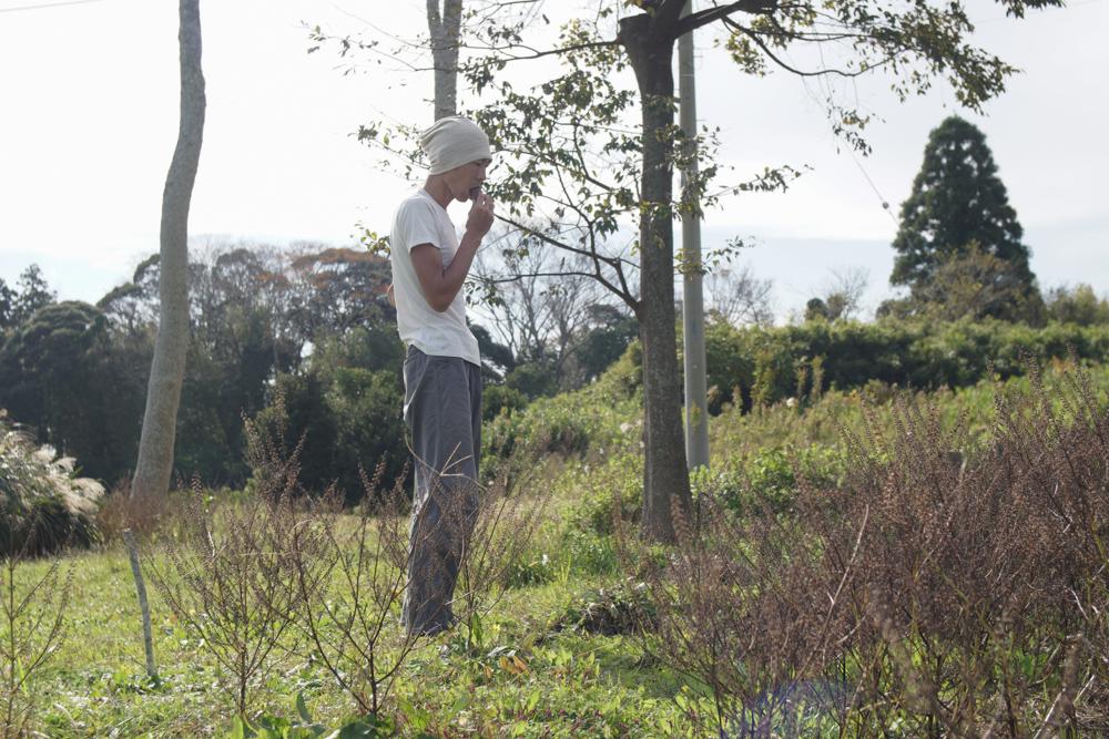 紫蘇が生えていた区画の雑草とり