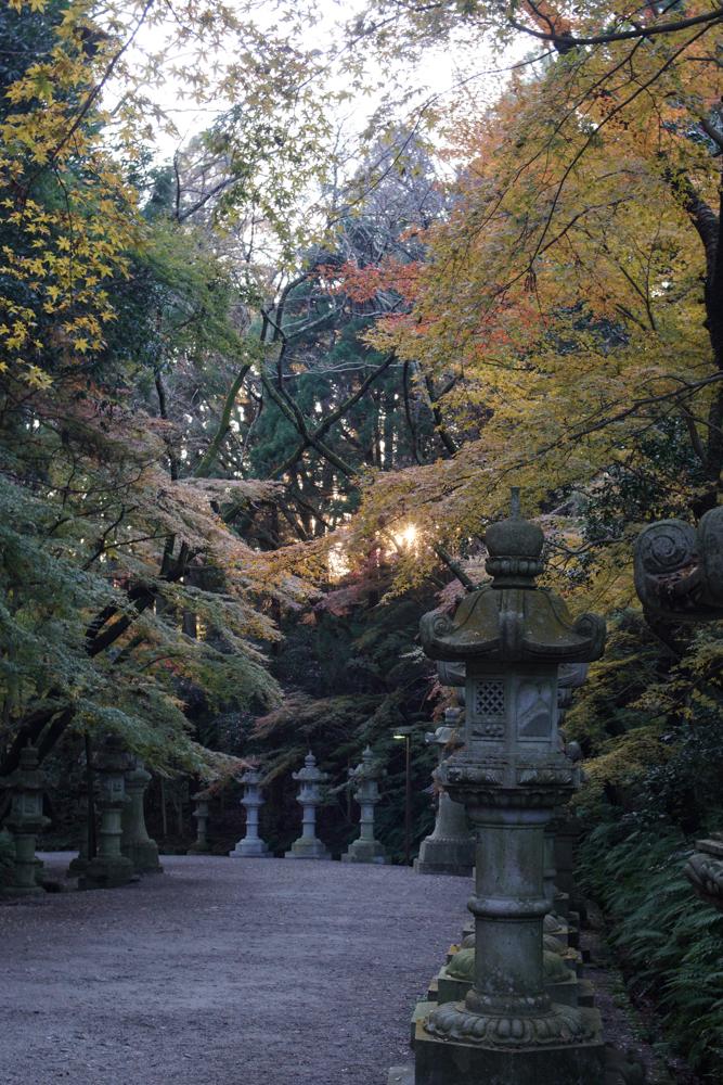 香取神宮 参道の灯籠と紅葉