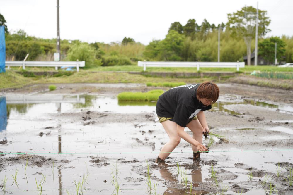 房総オルタナティブライスフィールド 田植えDAY1 初めての田んぼ、初めての手植え
