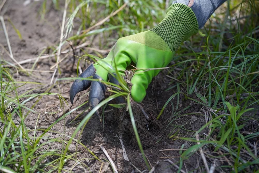 #67 Inforest Gardening Genie Gloves 爪付きモグラ手袋