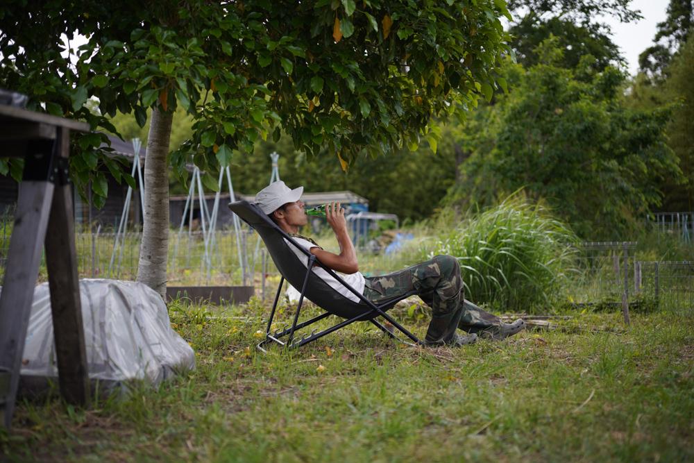 ニンニクの花芽、サンマルツァーノの定植、サツマイモ区画の開墾始める