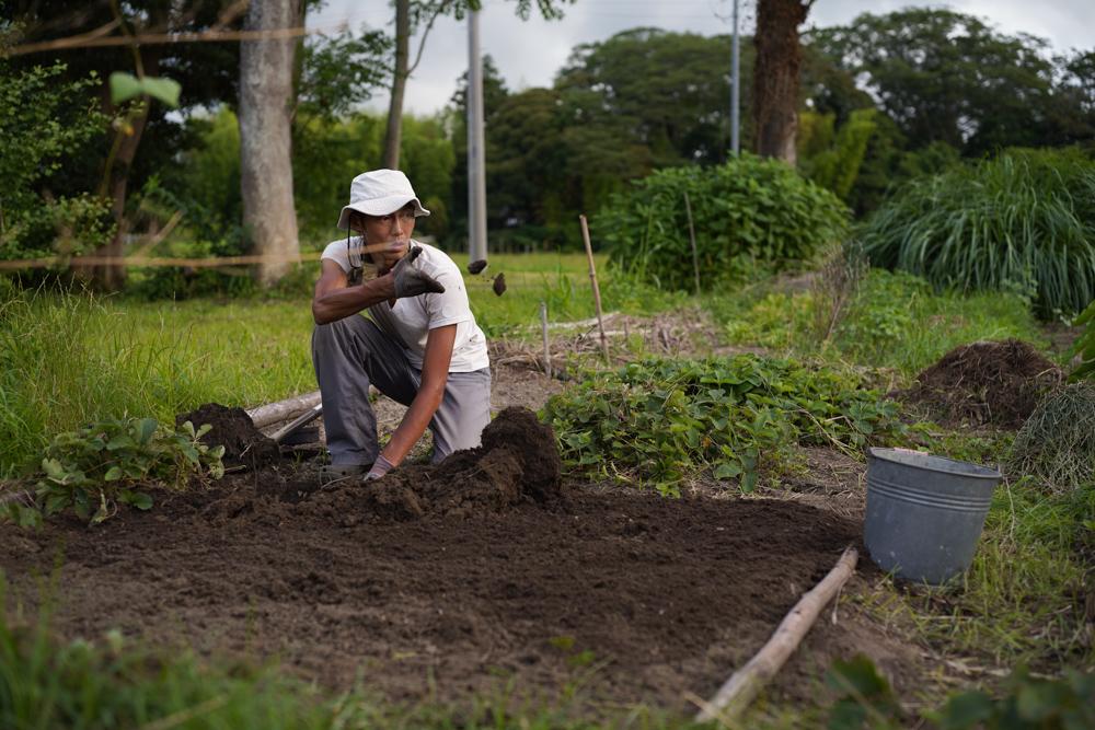 ニンニク畑の開墾とミニミニ田んぼに苗を植えてみる