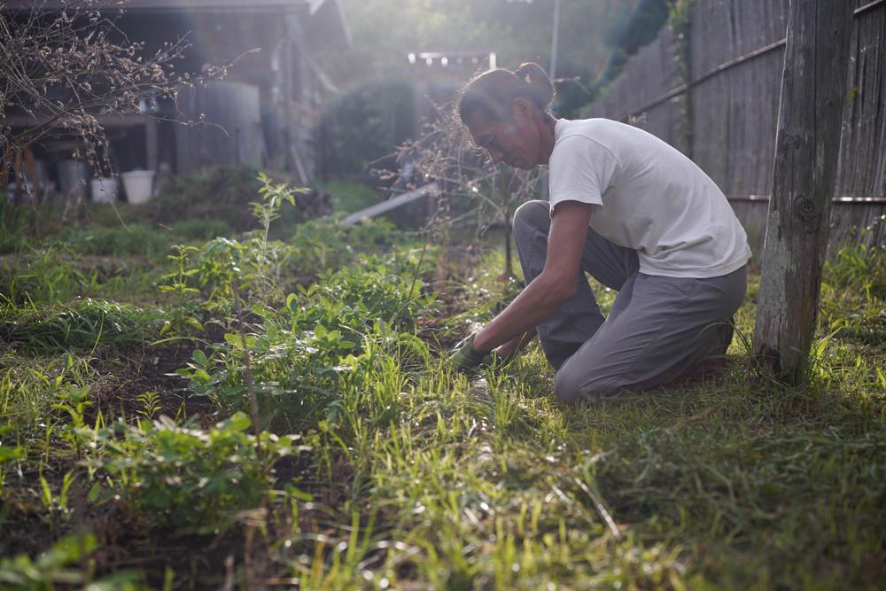 南国の空気に包まれて草刈り