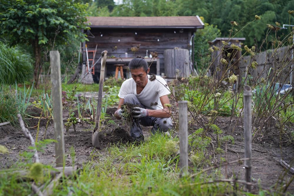 メイン区画のハマスゲ抜きと大根と沖縄島人参の種下ろし、草刈機をリプレイス