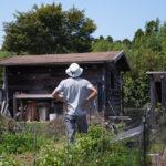 小屋のパネルが立ち上がって6年、7年目のオルタナティブライフ