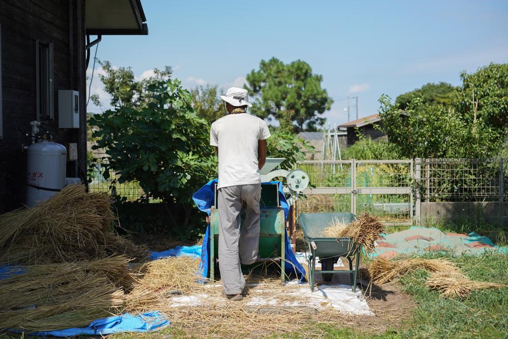 房総オルタナティブプロダクト#1 稲藁でほおきを作ってみる ほうきの作り方とプロトタイプ完成