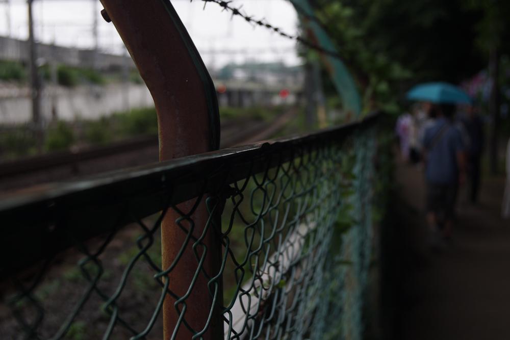 Angenieux 35mm F2.5