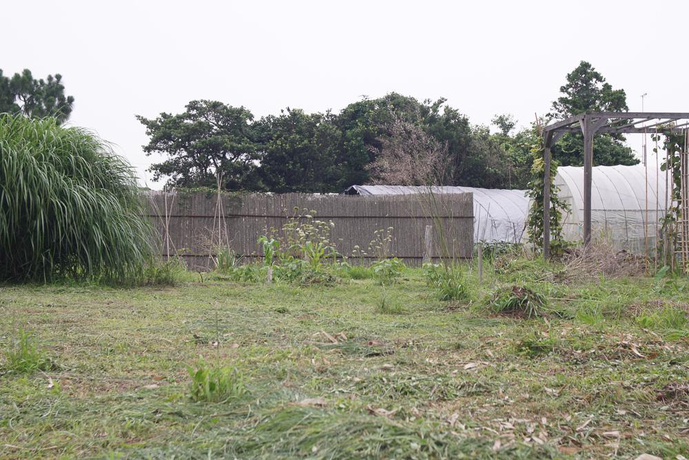 房総オルタナティブガーデン 梅雨の合間の草むしり