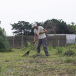 房総フィールド的雑草農法