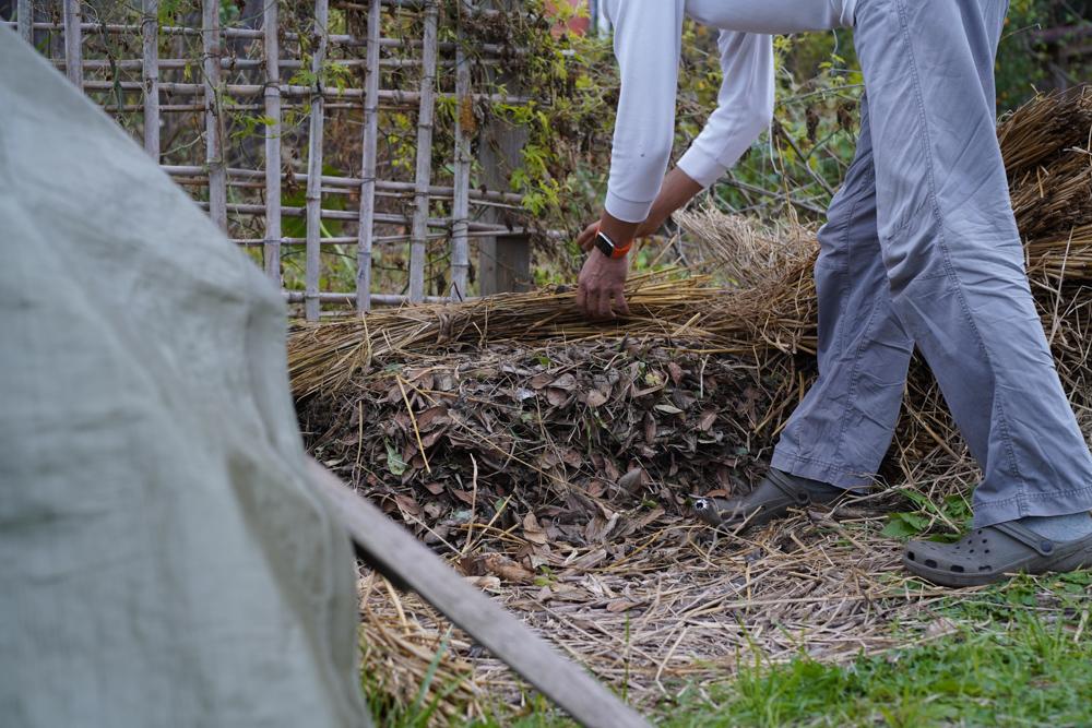 カチコチ砂地を落ち葉と籾殻と糠で土壌改良