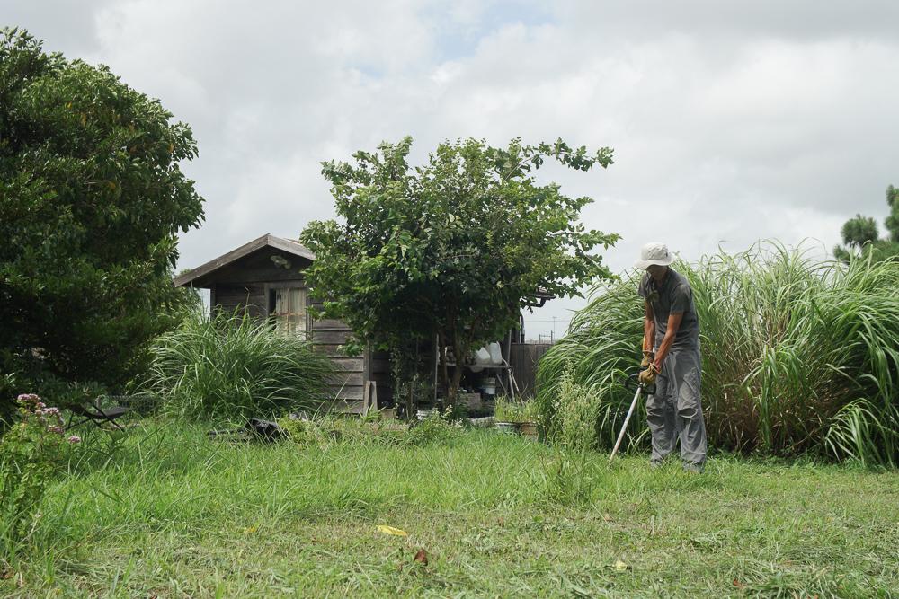 房総フィールドガーデン 雑草農法 敷地の草刈り