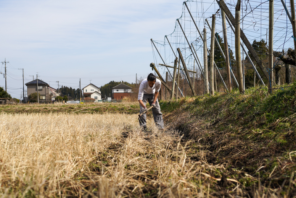 春の田起こしを始める