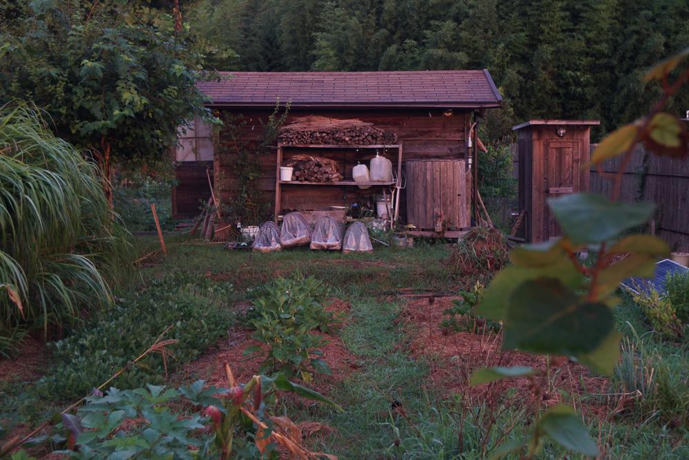 房総フィールド 朝日に染まる小屋
