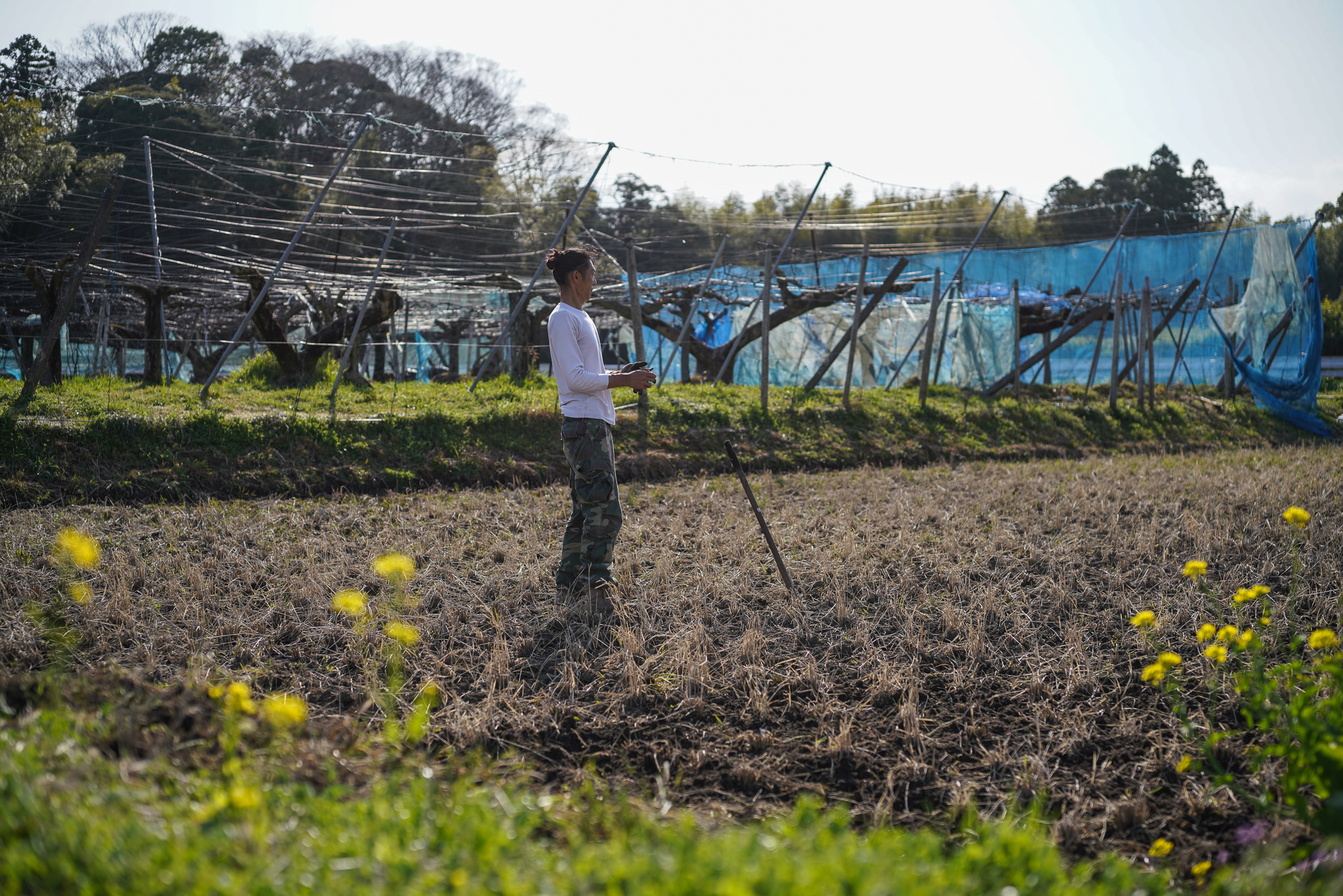 春の田起こし DAY9とトマト・ナス・ニンジンの種まき