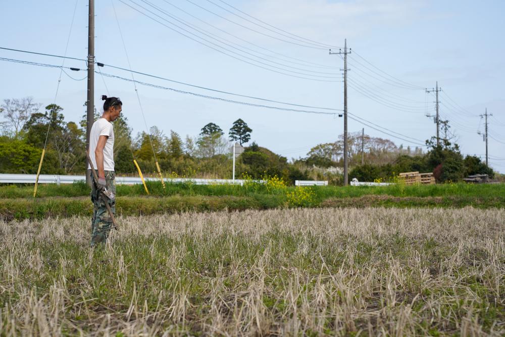 春の田おこしDAY10 ラウンド2 地道な雑草取り
