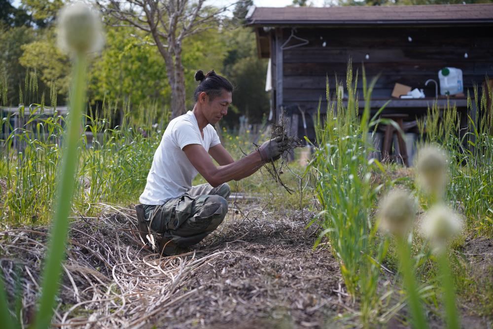 日がな1日ガーデニングと田んぼに苗が届く