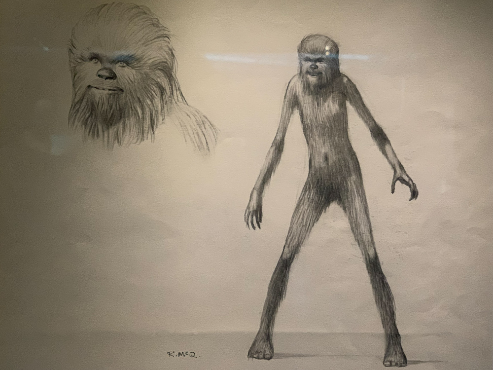 STAR WARS IDENTITIES THE EXHIBITION 天王洲 寺田倉庫 チューバッカー原画