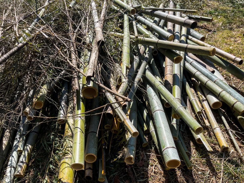竹を焼いて竹炭を作る