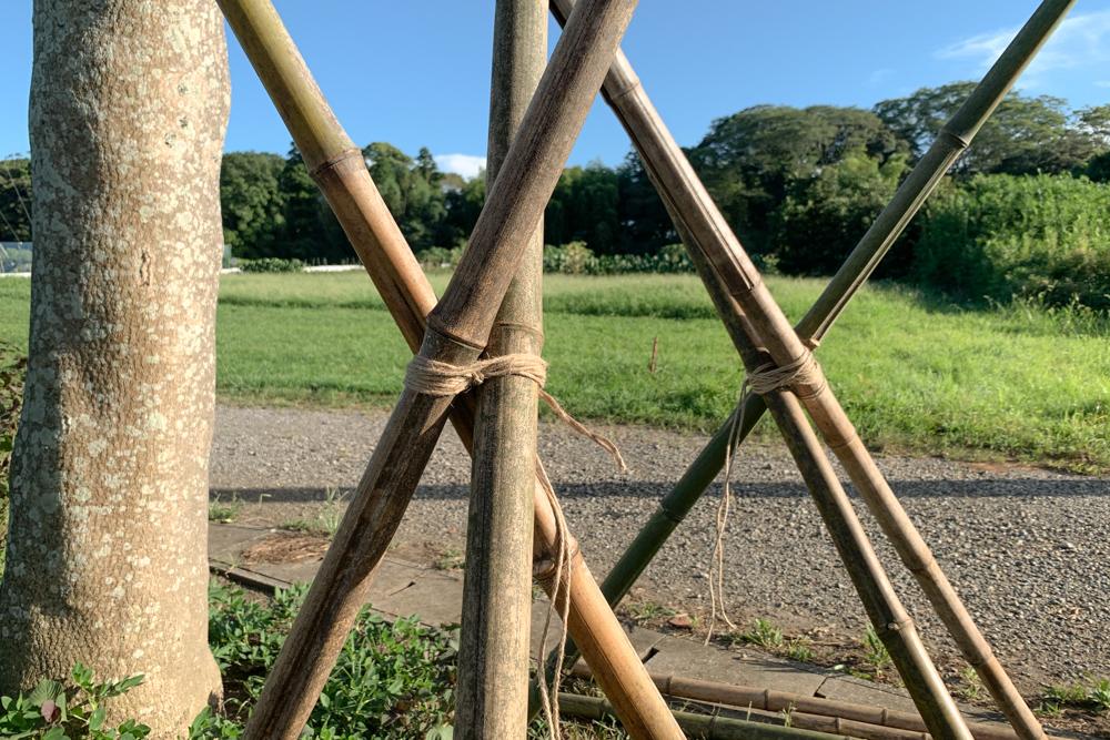 房総オルタナティブライスフィールド 初めての稲刈りDAY3